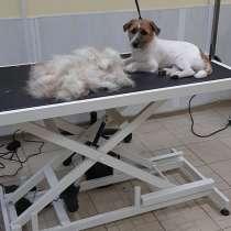 Стрижка собак и кошек, в Москве