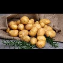 Картофель, в Иркутске