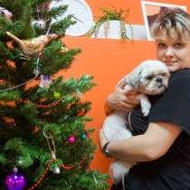 Комплексный груминг для кошек и собак в BookingCat, в Люберцы