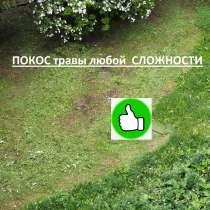 Покос травы, в Александрове