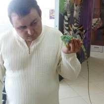 Сергей, 38 лет, хочет пообщаться, в г.Минск