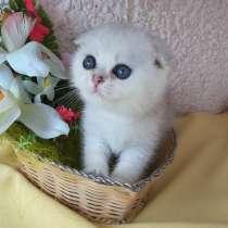 Very beautiful boy color ns 11 Birthday 19.05.18.Good price, в г.Астана