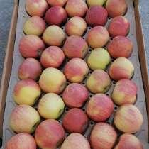 Яблоки Гала, в Краснодаре