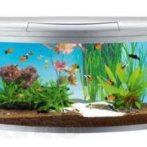Чистка, обслуживание аквариумов, в Хабаровске