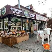 """Фермерский магазин """"Три пятерочки"""", в г.Бишкек"""