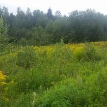 Продаю участок в садовом товариществе, в г.Минск
