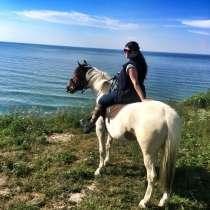Конные прогулки, в Калининграде