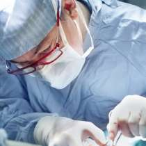 Стоматолог-ветеринар, в Санкт-Петербурге