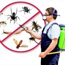 Травим тараканов, клопов, блох, в Шелехове
