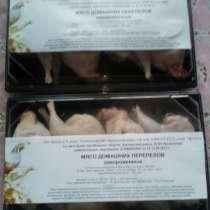 Перепелинное мясо, в Челябинске