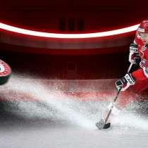 Хоккейная коробка - качественно, недорого, минимальный срок, в Екатеринбурге
