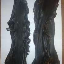 Морская капуста, слоевища, в Владивостоке