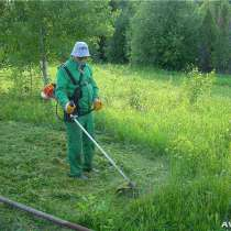 Покос травы, в Краснодаре