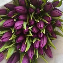 Тюльпаны к 8 марта, в Красноярске