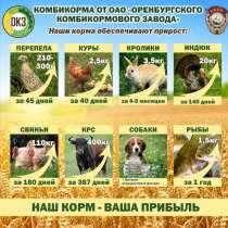 Комбикорма полнорационные Оптом для всех видов С/х животных, в г.Астана
