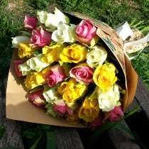 Роза с доставкой Волгоград Волжский, в Волгограде