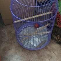 Продам клетку для попугая, в Шарыпове