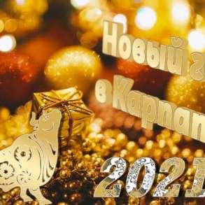 Новогодний тур в Карпаты на 5 дней, в г.Киев