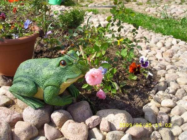 Садово-огородные активисты! На дачу/частный дом!