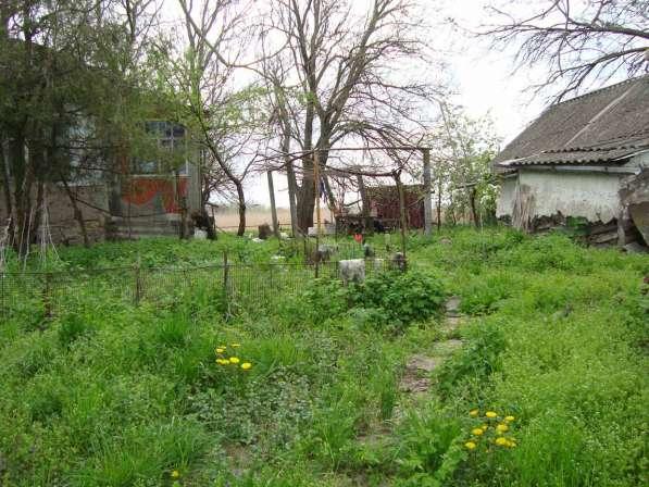 Усадьба на самом берегу ерика Платов. Выход в Азовское море