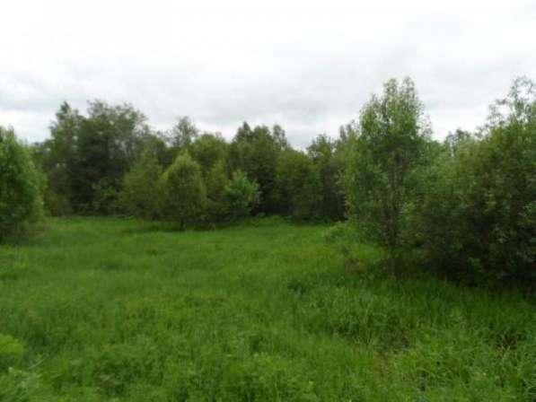 14 соток под личное подсобное хозяйство в дер. улино, Можайский р-он, 108 км от МКАД по Минскому шоссе.