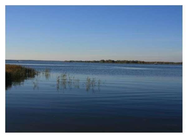 Участок на 1 береговой линии р. Волга, 5 Га, д. Тешилово
