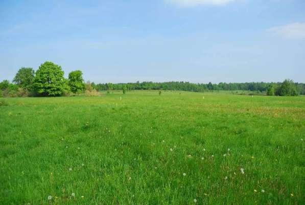 Продается земельный участок сельхозназначения!