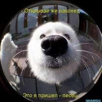 Добрый день, в Ижевске