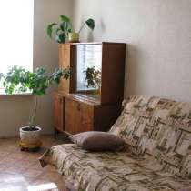 Сдается 1-ая квартира на Щелковской, в г.Москва