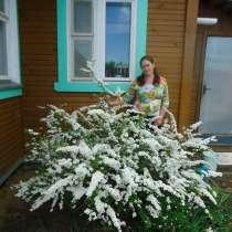 Продаю растения из грунта, в Ярославле