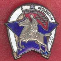 СССР знак ОСОАВИАХИМ Ворошиловский всадник, в Орле