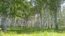 12 соток ровной плодородной земли, в г.Самара