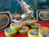 Черви Дендробена для рыбалки, в Сочи