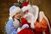 Дед Мороз и Снегурочка, в Коломне