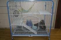 Большая клетка на колесах, в Екатеринбурге