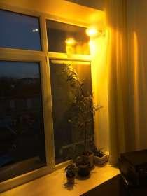 Натриевые зеркальные лампы ДНаЗ Reflux (Рефлакс), в Новороссийске
