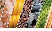 Куплю сою, рапс, пшеницу, сахар, растительное масло, в Астрахани