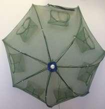 Раколовка зонтик, в Волгограде