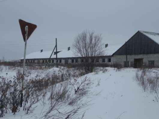 Продам животноводческий комплекс в Кирове Фото 3