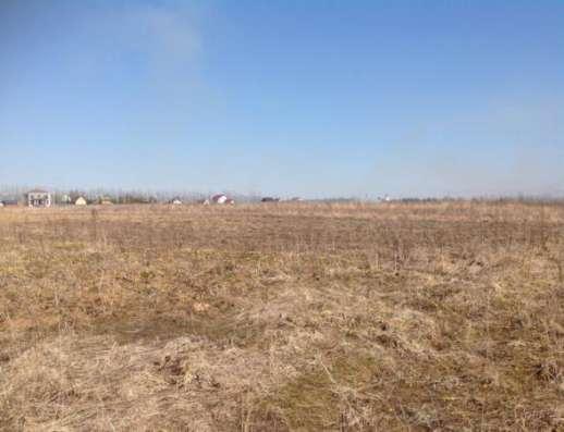 Продается земельный участок 30 соток (под ЛПХ) в д. Шохово, Можайский район, 131 км от МКАД по Минскому шоссе.