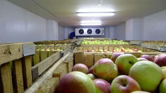 Овощехранилище под ключ в Крыму. Хорошие цены. Сервис в г. Симферополь Фото 1