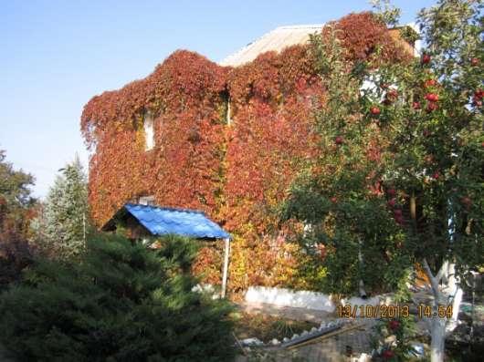 Меняю дом в Днепропетровской обл. на недвижимость  в России