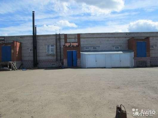Сдам помещение свободного назначения 220 м² Сдам в аренду в г. Нефтекамск Фото 4