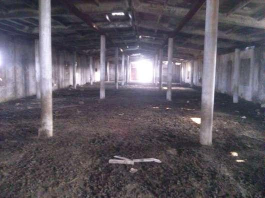 Продается Ферма для жвотноводства в г. Ташкент Фото 2