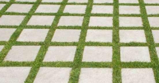 Канада Грин. газоны для ленивых. Canada Green. Grass Seed в Москве Фото 2