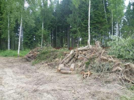 Расчистка участка от кустарника, вырубка (спил) деревьев. Снос дома. в Клине Фото 2