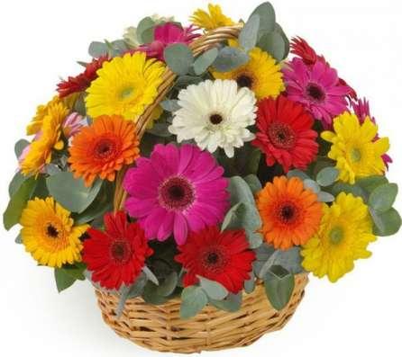 Композиции и корзины с цветами