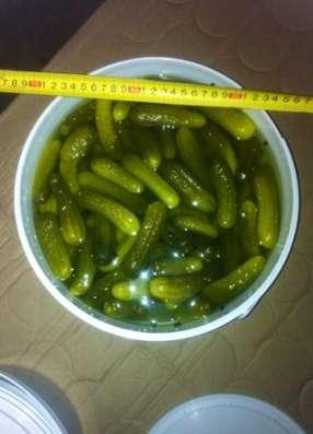 Оптом консервированные овощи