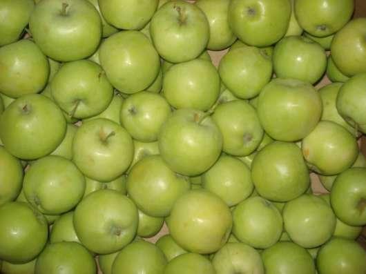 Яблоки Юбиляр оптом в г. Самара Фото 1