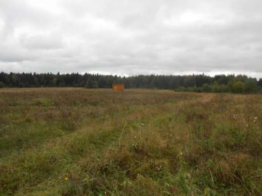 Продается земельный участок 20 соток в дер. Дегтяри, Можайский район, 135 км от МКАД по Минскому шоссе. Фото 1